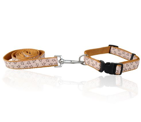 star_printed_dog_collar_with_leash_brown