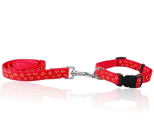 star_printed_dog_collar_with_leash_red