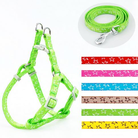 star_printed_dog_leash_with_harness_green